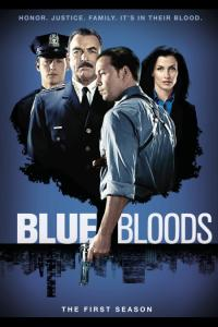 Blue Bloods: Temporada 01