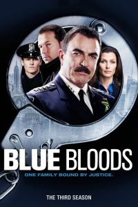 Blue Bloods: Temporada 03
