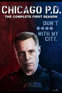 Chicago P.D.: Temporada 01