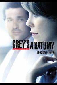 Grey's Anatomy: Temporada 11