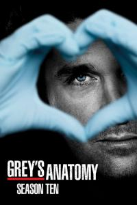 Grey's Anatomy: Temporada 10