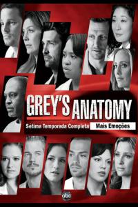 Grey's Anatomy: Temporada 07