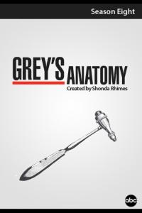 Grey's Anatomy: Temporada 08