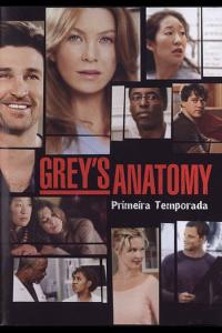 Grey's Anatomy: Temporada 01