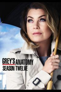 Grey's Anatomy: Temporada 12