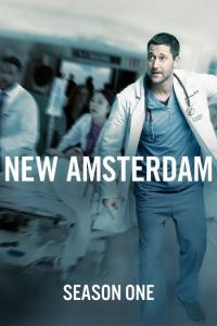 New Amsterdam: Temporada 01