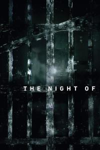 The Night Of: Temporada 01